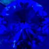 Azul/Safira